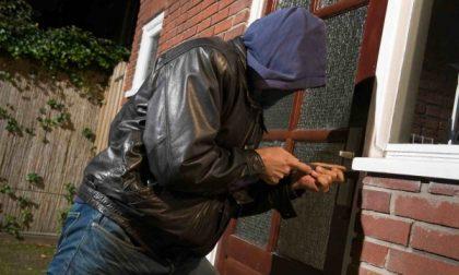 Ladri in casa rubano soldi e oro