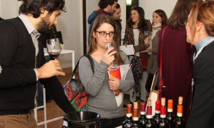 Carate, primo festival dedicato al vino di qualità con il patrocinio del Comune