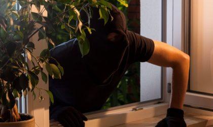 Cesano Maderno, caccia ai ladri: spunta anche un fucile
