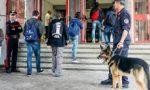 Desio, controlli anti-droga al liceo Majorana