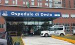 Nova Milanese, è in pericolo di vita per colpa dei piccioni