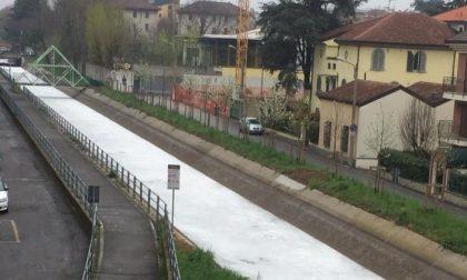 Monza: canale Villoresi oggi completamente tinto di bianco