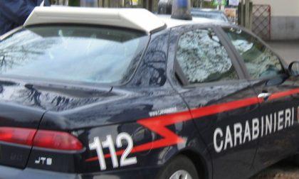 Nova Milanese – Nascondeva droga in cantina, arrestato 24enne