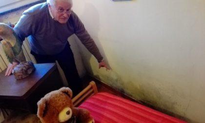 """Sant'Albino, crepe nei muri e muffa: viaggio nelle case popolari da """"incubo"""" di via Guardini"""