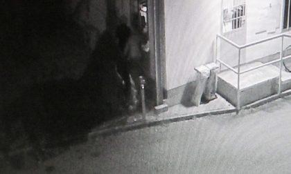 Seregno: ladri sfondano il muro della ditta ripresi dalle telecamere