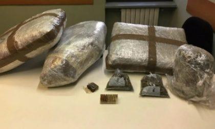 Traffico di droga dal Sudamerica: 54 arresti, c'è anche un caratese