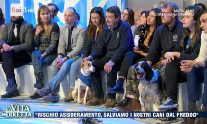 Tre cani Enpa Monza star della TV