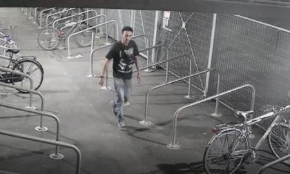 (VIDEO) – Monza, ladri di biciclette in azione