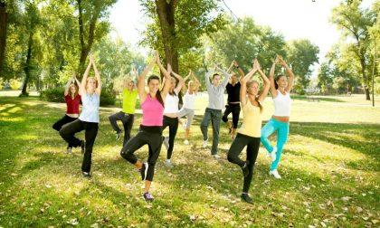 Giornata internazionale di Yoga: lezione al Parco di Monza