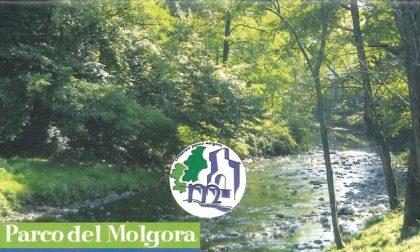 Parco del Molgora: mese di giugno ricco di eventi