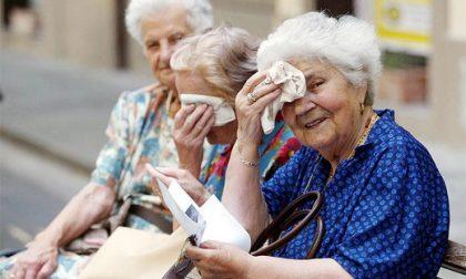 Caldo in arrivo: attenzione a bambini e anziani – 5 REGOLE DA SEGUIRE