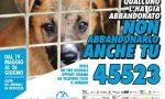 SMS-SalvaMi Subito: campagna contro la violenza sugli animali (VIDEO)