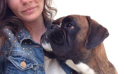 Cane avvelenato a Meda muore dopo giorni di agonia