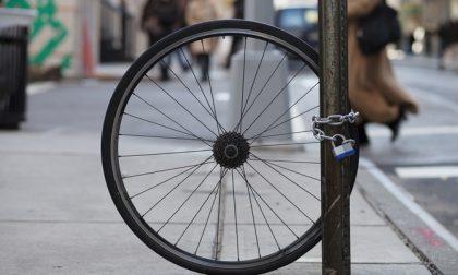 Ladri di biciclette fermati al Globo di Busnago