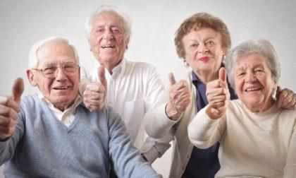 Nonni imprenditori: gli over 70 che lavorano sono il 9,5% – I SETTORI