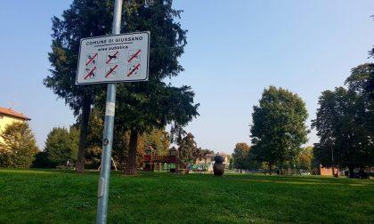 """Topi al parco, derattizzazione al """"Nicholas Green"""""""