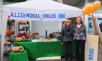 Alice Monza Onlus in piazza contro l'ictus celebrale