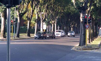 Occhio ai semafori: ecco dove rischiate la multa