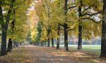 Allerta meteo | Chiusura immediata del Parco e dei cimiteri