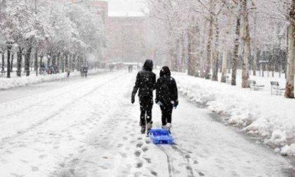 """Caos neve, """"bordate"""" della Rondine all'Amministrazione comunale"""
