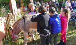 Marcia degli asini: bambini e asinelli per celebrare la giornata dei diritti dell'infanzia – INTERVISTE