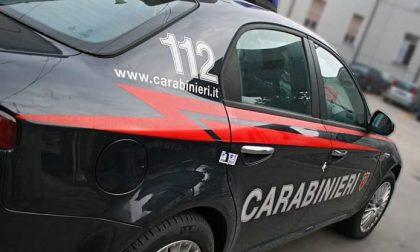 Katherine, 11 anni, scompare a Milano: l'appello corre fino alla Brianza
