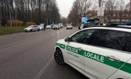 """Monza """"morsa"""" dallo Scorpione"""