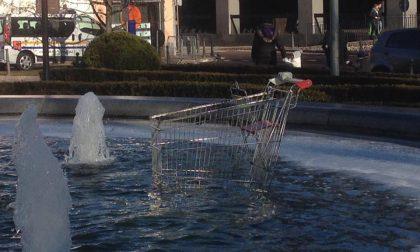 Il carrello della spesa finisce… nella fontana FOTO