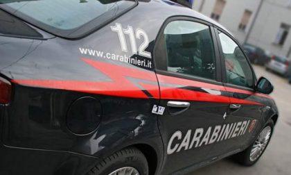 Ladro latitante arrestato dai carabinieri a Trezzo
