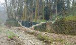 Giardiniere di Berlusconi cade da un albero a Villa Gernetto: gravissimo