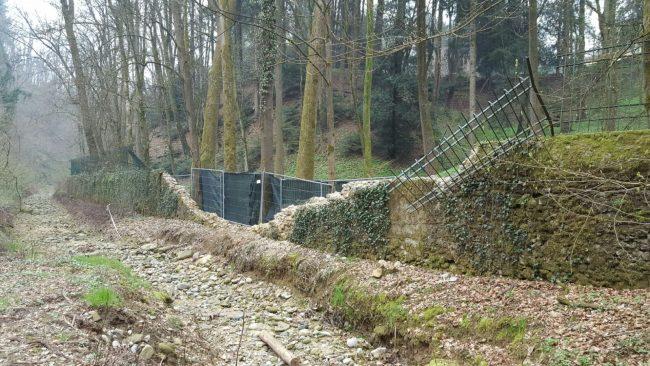 Giardiniere cade da un albero a villa Germetto a Lesmo, è grave
