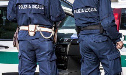 Venditore abusivo sulla Nazionale, sequestrati cento chili di castagne