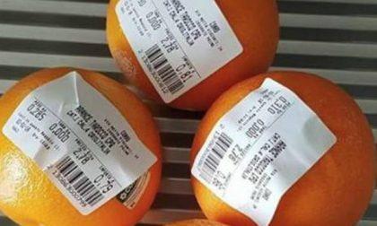 Sacchetti frutta a pagamento tanto rumore per 10 euro all'anno