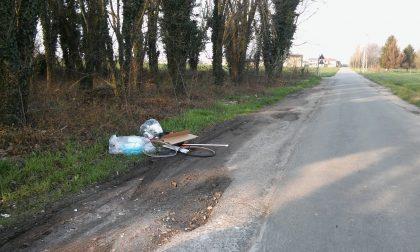 Trezzo foto-trappole in azione contro gli sporcaccioni del verde