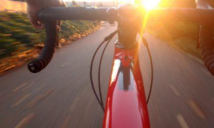 Parco di Monza in bicicletta   Per gli appassionati arriva Brianza Bike Fest