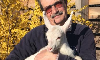 Il rifugio Enpa di Monza accoglie due capretti FOTO