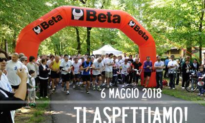 """""""In corsa con Marco"""": la gara benefica ritorna al Parco di Monza"""