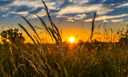 Rinnovato il contratto provinciale agricolo