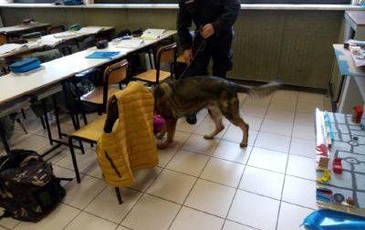 In classe con la droga, studente beccato dai Carabinieri