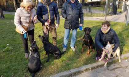 Trezzo in 200 contro il divieto di accesso ai parchi per i cani