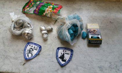 Controlli antidroga in città: il NOST sequestra hashish, marijuana e cocaina FOTO