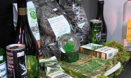 """Cannabis, De Corato scrive ai sindaci: """"Fate rispettare la sentenza della Cassazione"""""""