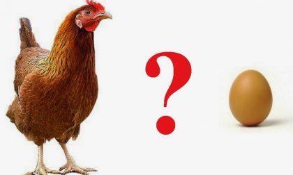 Il sindaco lancia il patto dell'uovo e della gallina