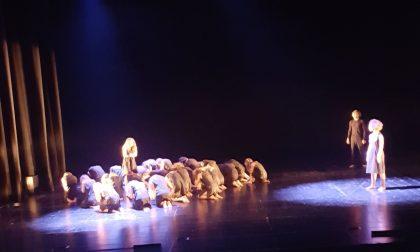 Liceo Zucchi: Latino, Greco e... teatro