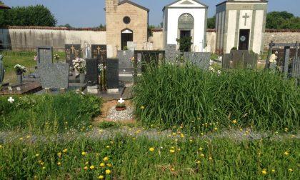 Erbacce al cimitero, l'affondo della Lega