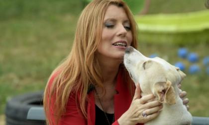 Michela Vittoria Brambilla diserta il Parlamento, ma presenta leggi sui… cani