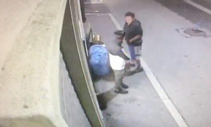 Gli rubano i sacchi dei rifiuti e prende pure la multa