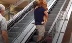 Google ha paura delle scale mobili VIDEO