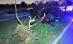 Gravissimo incidente in scooter, 45enne trasportato d'urgenza al San Gerardo