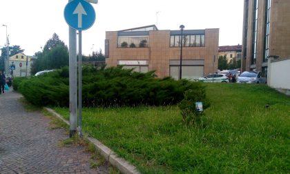 Rubata la bicicletta di Matteo Trenti in via Visconti
